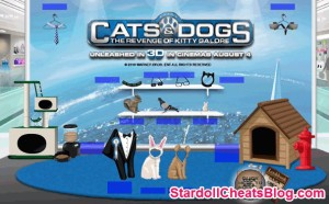 Cats-Dogs-hidden-store